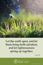 Bible Lens: Let the earth open (csps bl15)