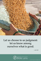 Bible Lens: Let us choose to us judgment: (csps bl16)