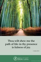 Bible Lens: Thou wilt shew me (csps bl17)