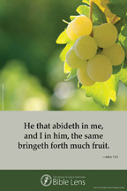 Bible Lens: He that abideth in me (csps bl22)