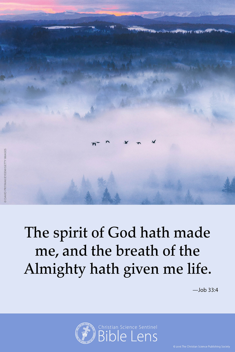 Bible Lens: The spirit of God hath made me (csps bl26)