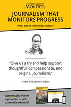 Monitor: Journalism 4 (csps m19)