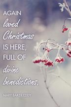 Christmas (berries) (csps 4)