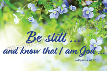 Be still and know (H24)